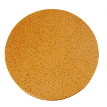 EIBENSTOCK Sponge disc for EPG 400 - 400 mm Home